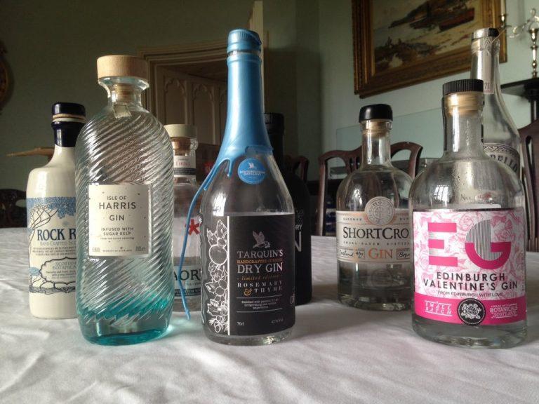 Craft gin bottles